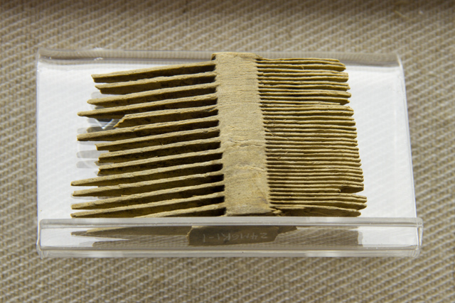 Small comb. The left side would have been used to untangle hair, the finer, more closely spaced right side, to remove lice and vermin.