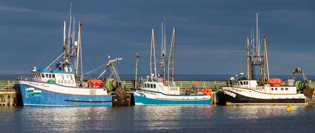Harbour: L'anse aux loups (Wolf cove)