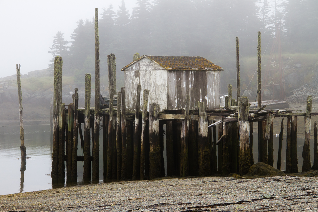 Wharf at low tide