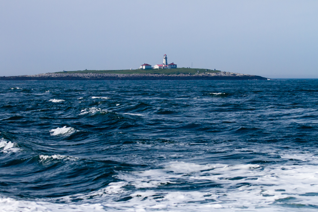 Machias Island