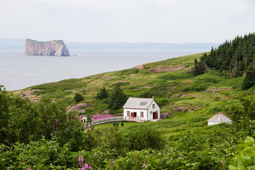 Île Bonaventure: Home of the 80,000-bird Northern Gannet colony