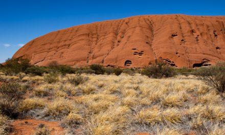 Terra Australis 3