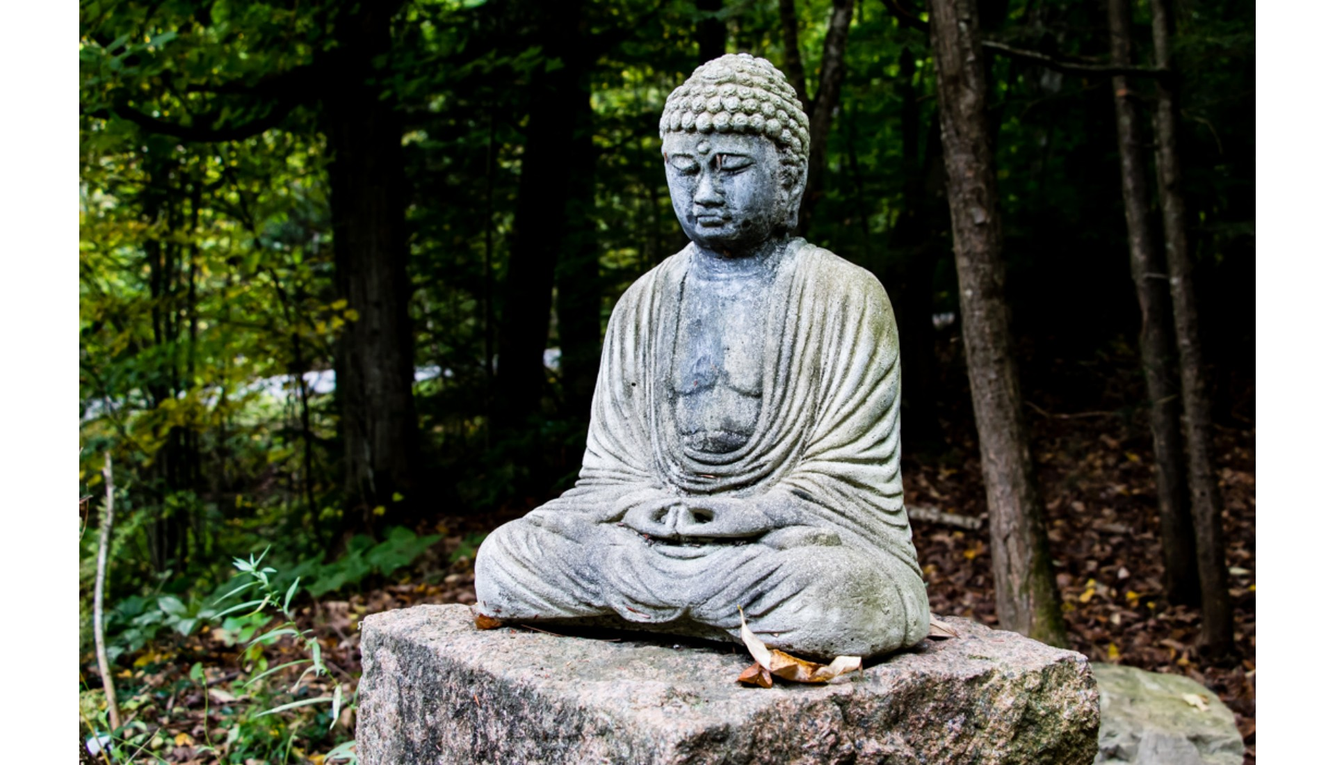 BAckyard Buddha, Chelsea, QC, 2015