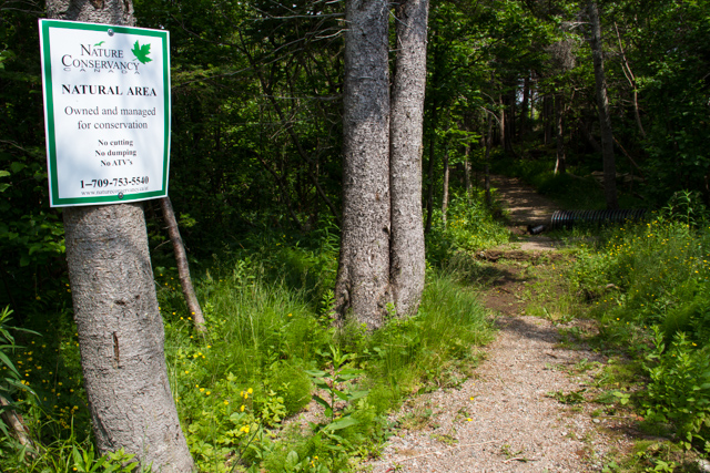 Nature Conservancy maintains the walking trail